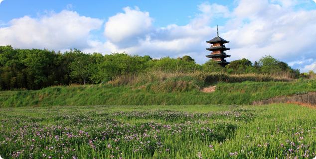 写真:吉備路の備中国分寺